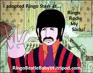 ringoadoption2.jpg